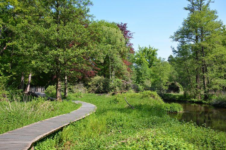 volnderpad dal Limburg bij Swalmen