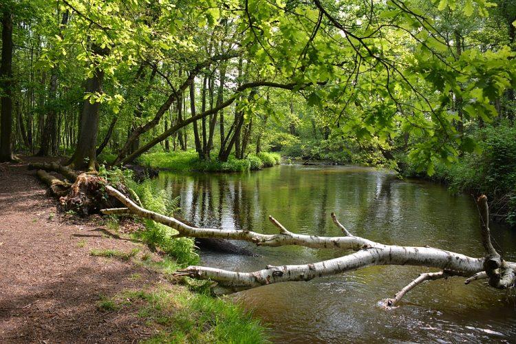 wandelen dal van de Swalm Limburg