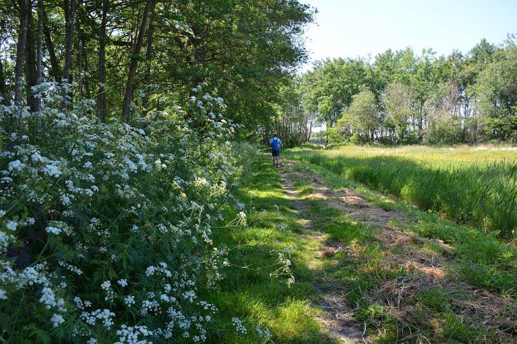 wandelen in de Achterhoek de Trage Tocht Slangenburg