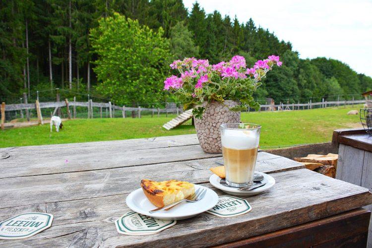 Boscafé t Hijgend Hert Vijlen koffie met gebak