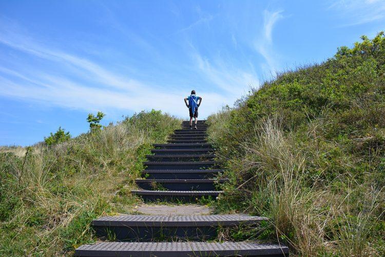 trap uitkijkduin bij Castricum aan Zee, Noordhollands Duinreservaat