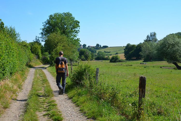 wandelen in Limburg Trage Tocht Vijlen