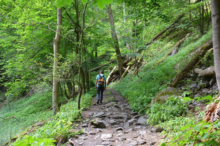 Bodetal Harz Harzer Hexenstieg