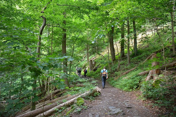 Harzer Hexenstieg etappe Treseburg Thale