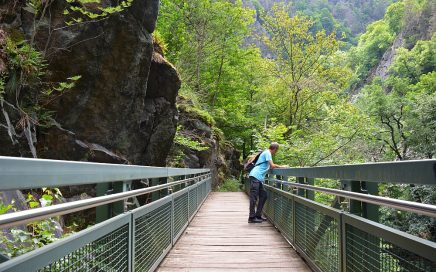 brug in het Bodethal Harz