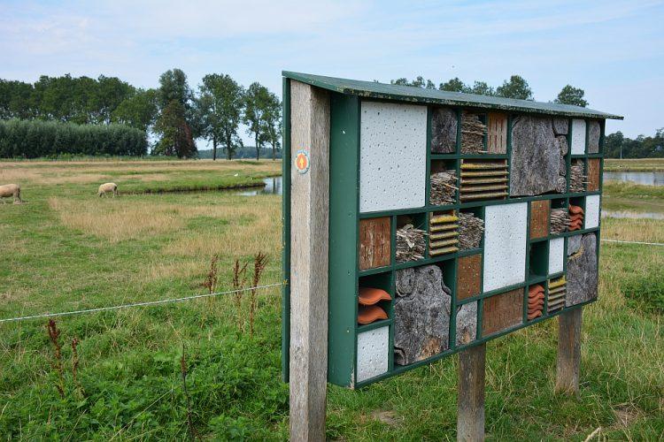 Insectenhuis aan kanaal Alkmaar Kolhorn