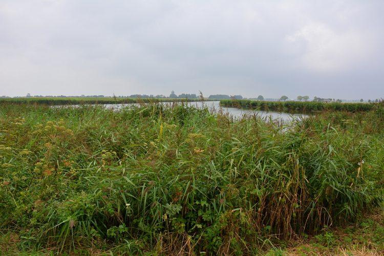 Pishoek Noord-Holland