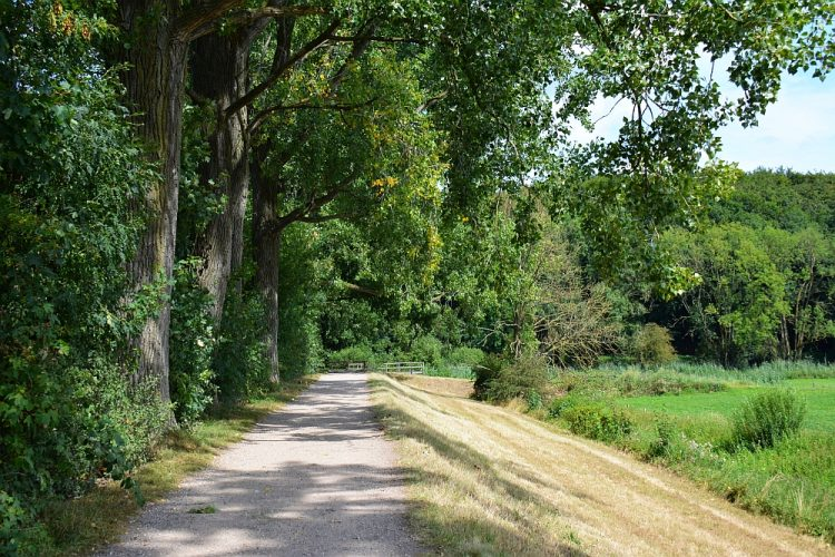 klompenpad wandelen bij Doorwerth