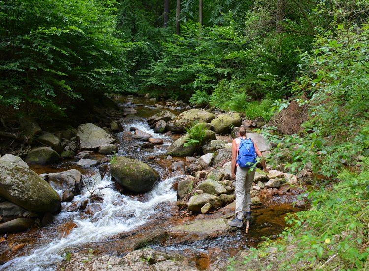 wandelen in de Harz de Harzer Hexenstieg Bodetal Thale