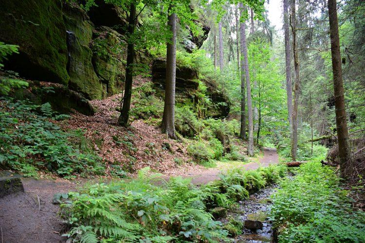 Felsenbühne Rathen Sächsische Schweiz
