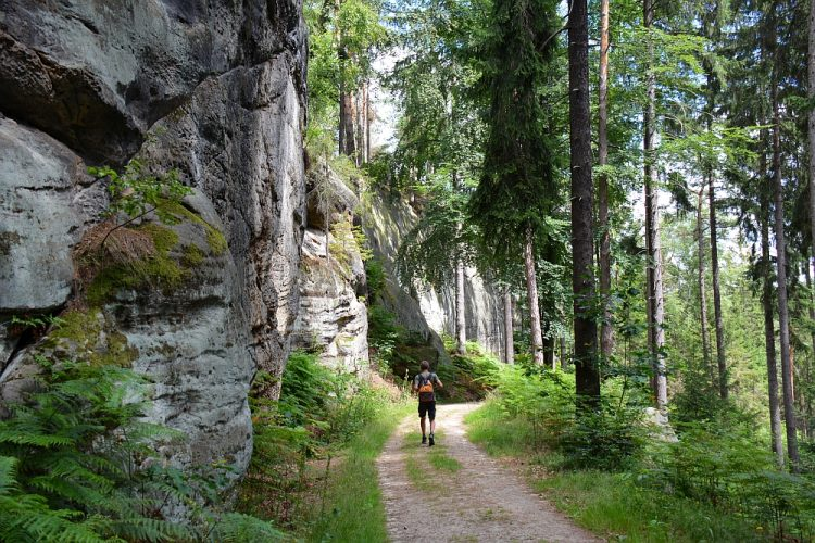 Malerweg etappe 3 Hohnstein Altendorf