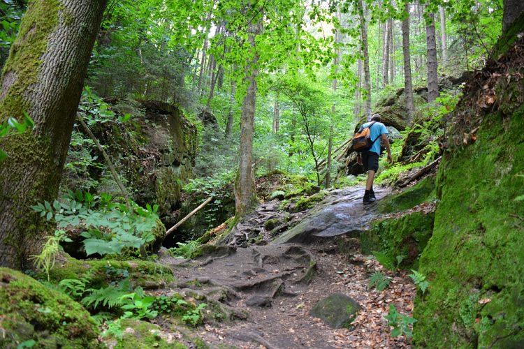 Malerweg in de buurt van Hohnstein etappe 2
