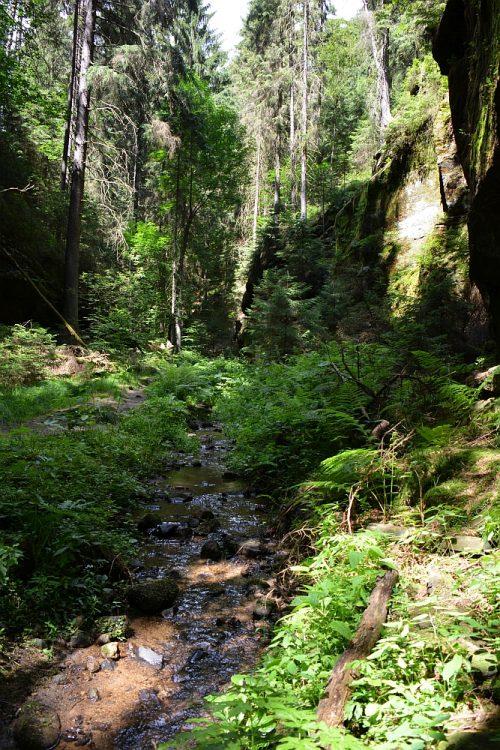 wandelvakantie Duitsland Etappe 3 Malerweg