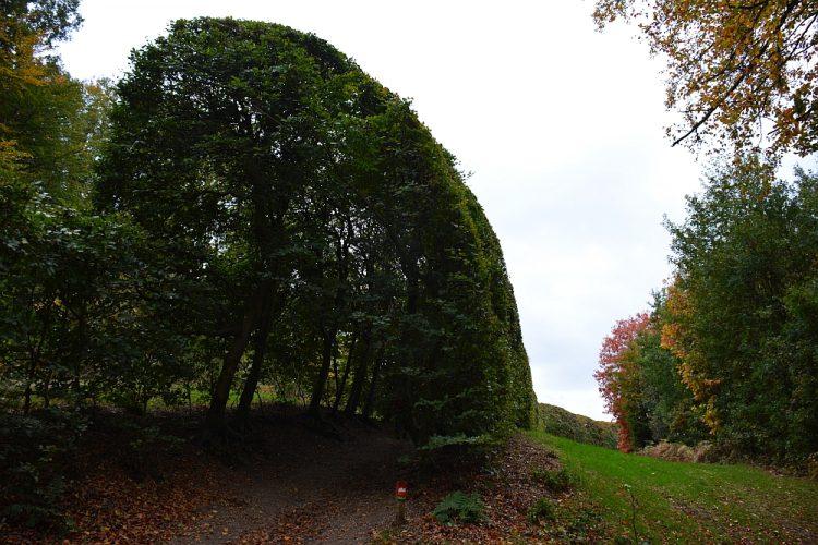 De groene bedstee landgoed Mariëndaal Arnhem