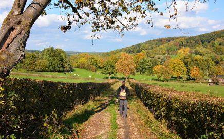 herfstkleuren tijdens de Trage Tocht Slenaken Zuid-Limburg