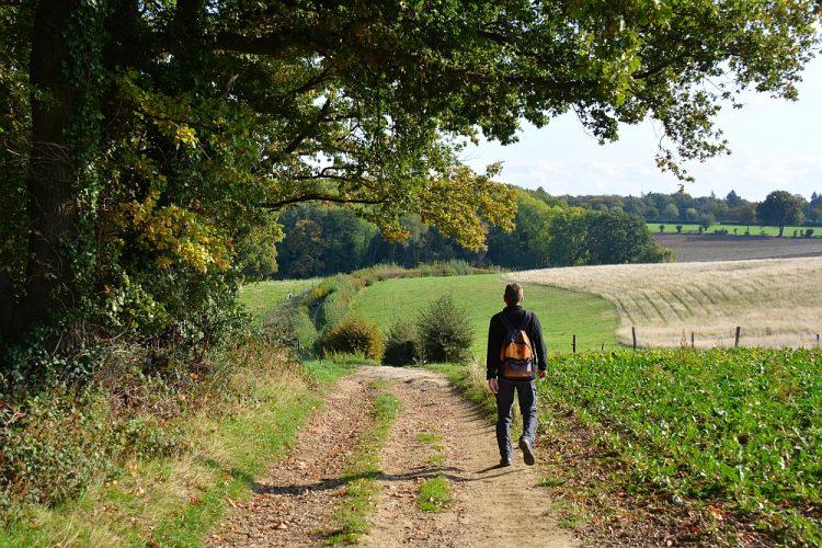 wandelen door het Limburgs heuvellandschap