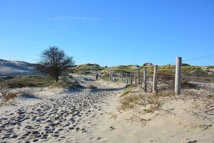 duinen bij Burgh-Haamstede Zeeland