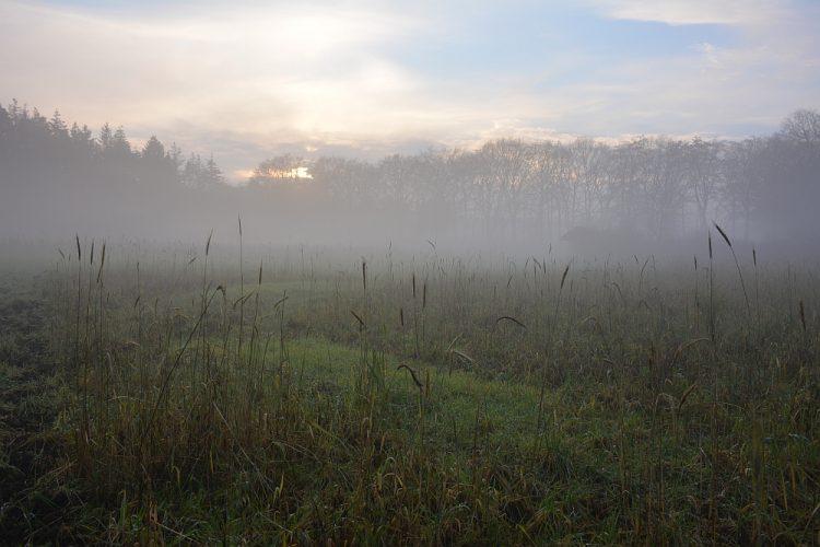 prehistorische akkers in de mist de Goudsberg Lunteren