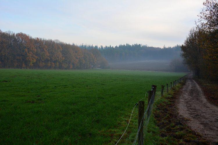 zicht op de Scheleberg bij Lunteren