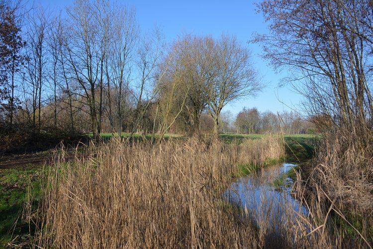 Stiphoutse Loop bij Helmond