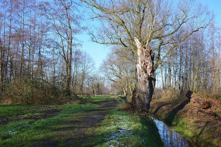 Trage Tocht Helmond wandelen