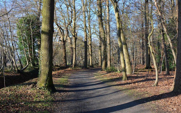 wandelen Warandapark Helmond