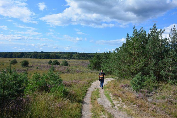 wandelen bij Radio Kootwijk