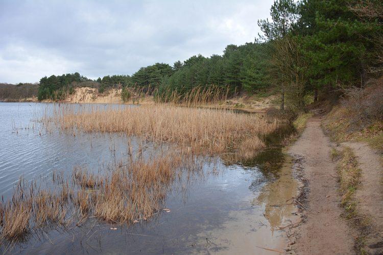 zwemmen in de Oosterplas Kennemerduinen