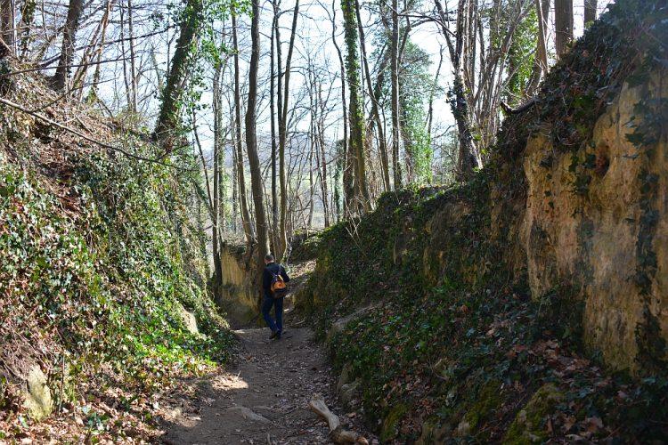 Groene Wissel Maastricht wandelroute