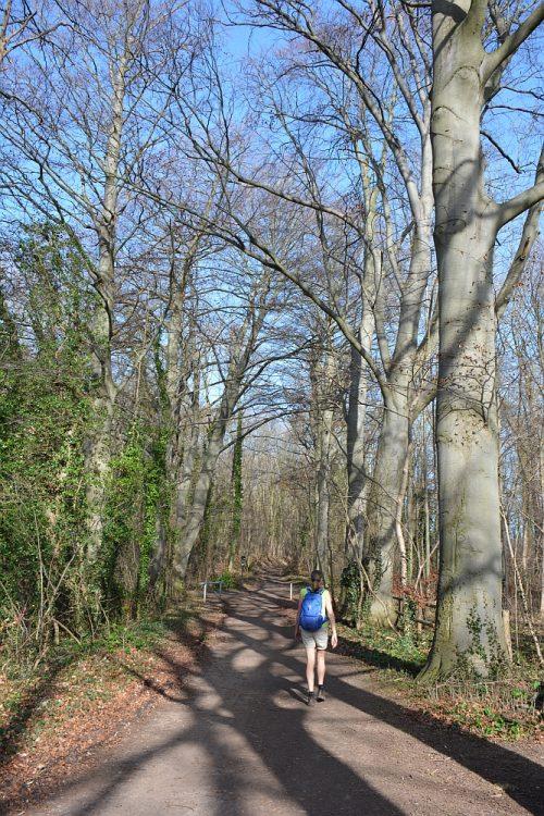 Groene wissel Maastricht wandelen rond de ENCI-groeve
