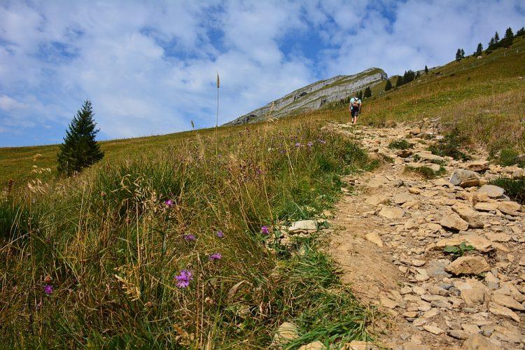 Wandelen in Oostenrijk de Kanisfluh Voralberg