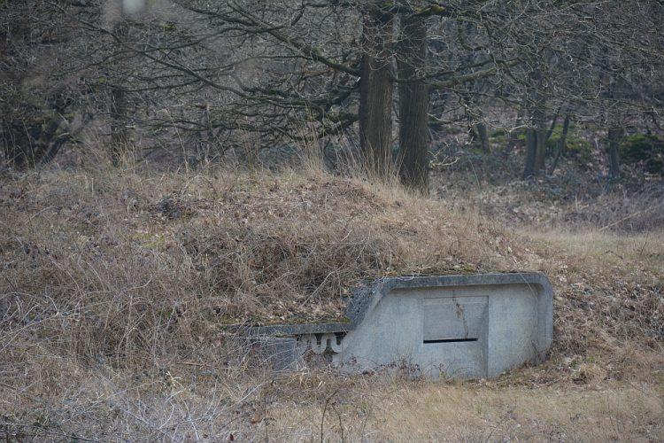 Vleermuizenkelder in De Leemputten Dorst