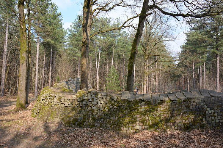 contemplatieve plek boswachterij Dorst