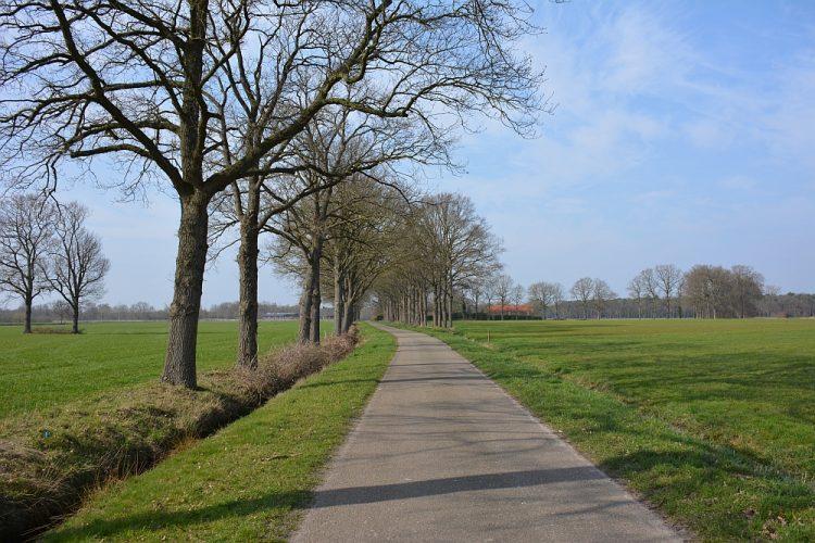 provinciale weg bij Chaamdijk