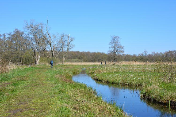 wandelen in Nationaal Park Weerribben-Wieden Overijssel