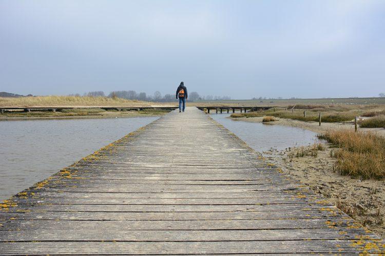 wandelen in de Verdronken Polder Zeeuws-Vlaanderen