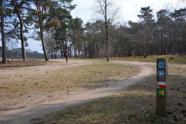 wandelroute Leemputten Boswachterij Dorst