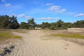wandelroute Otterlo Mosselse Zand