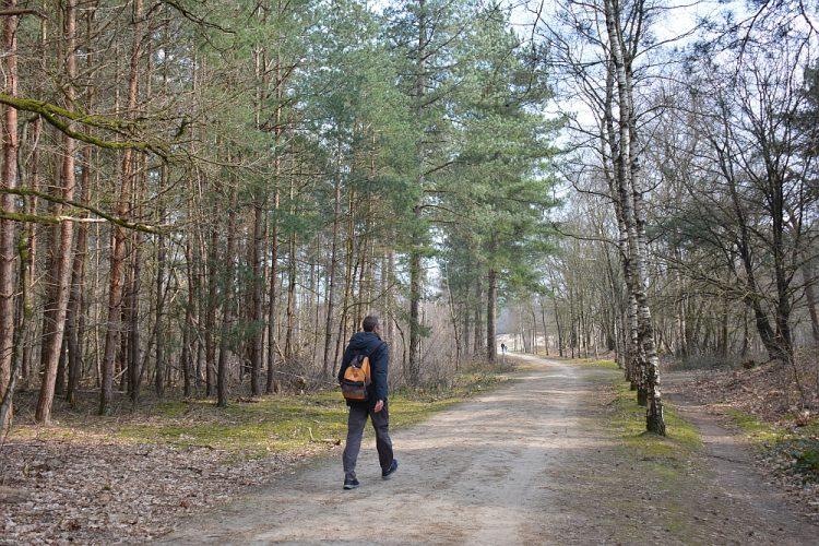 wandelroute boswachterij Dorst