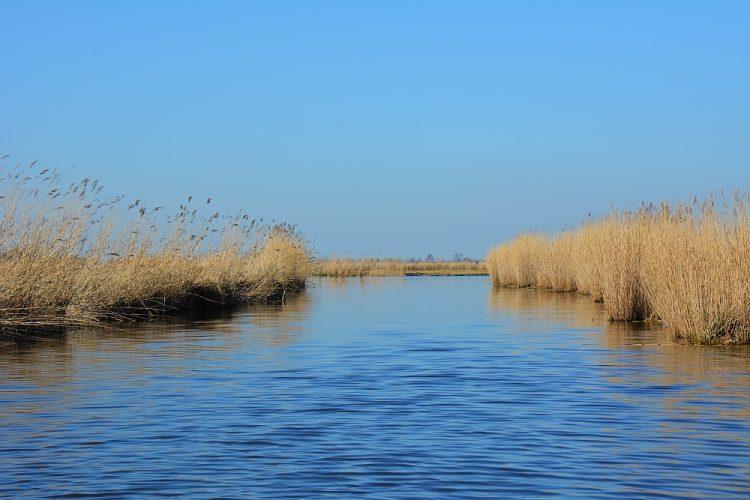 natuurgebied waterland Noord-Holland