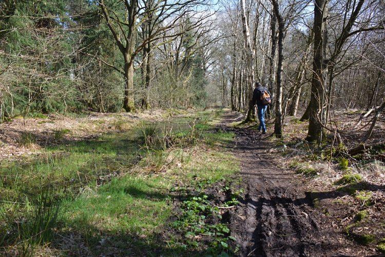 modderige wandelpaden in Friesland