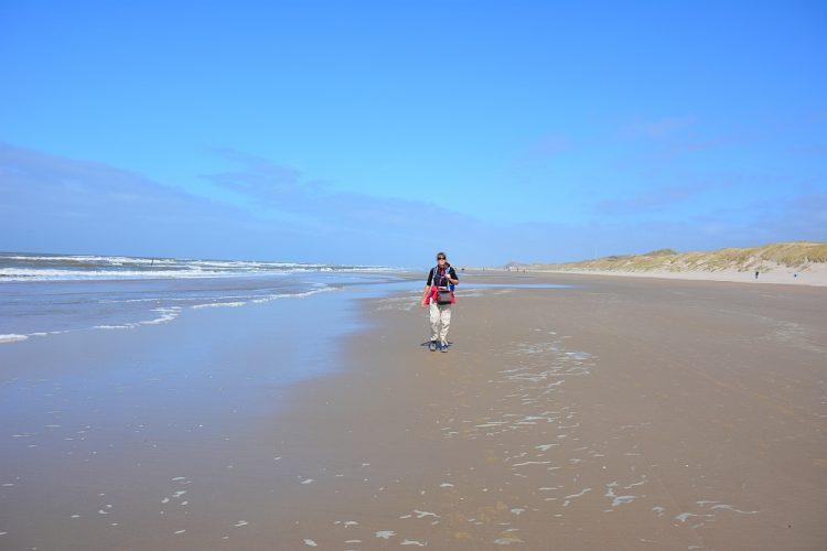 strandwandeling Schoorlse Duinen