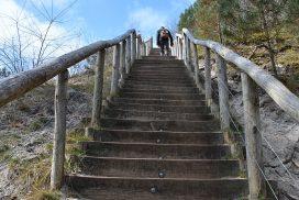 wandelen in de Schoorlse Duinen trap naar de hoogste duin