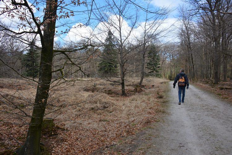 wandelroute Landgoed de Slotplaats Bakkeveen