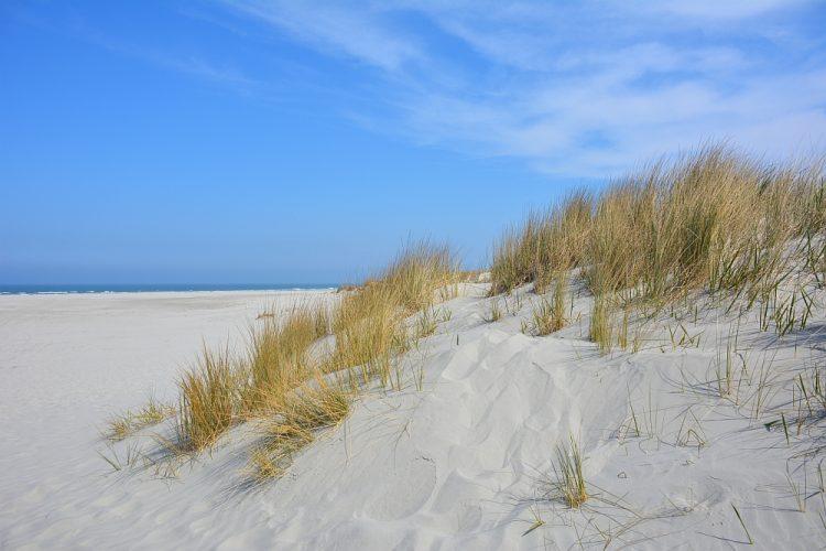 Hagelwit strand en duinen met helmgras