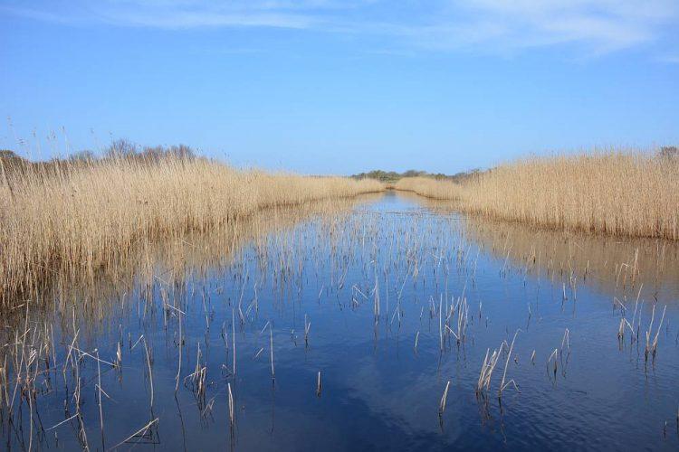 duinmeer op Schiermonnikoog