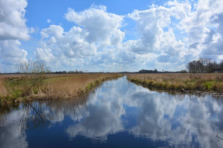imposante wolkenlucht in Nationaal Park De Alde Feanen