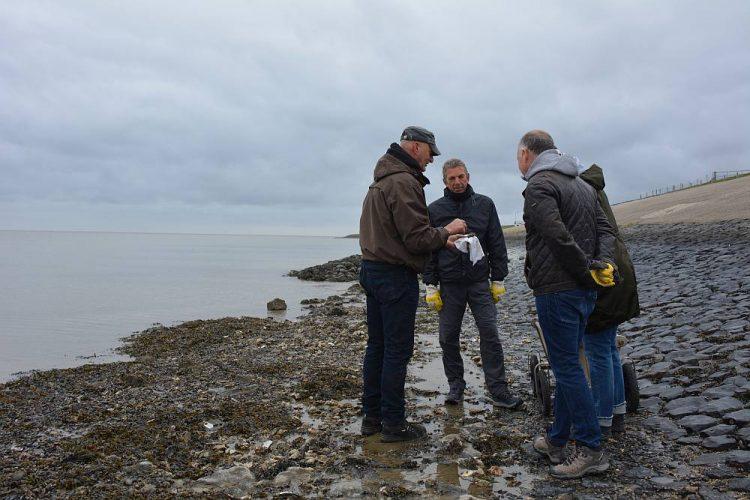 oesters rapen met Op Oost