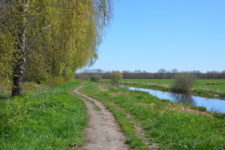 smal wandelpaadje langs het water in Oranjezoud Heerenveen