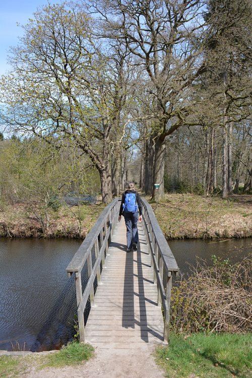 wandelbrug in Oranjewoud